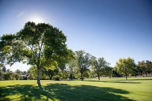 Fort Collins City Park